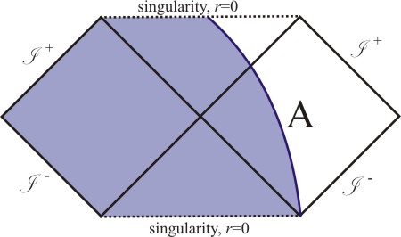 Cutting the Causal diagram of the Schwarzschild black hole